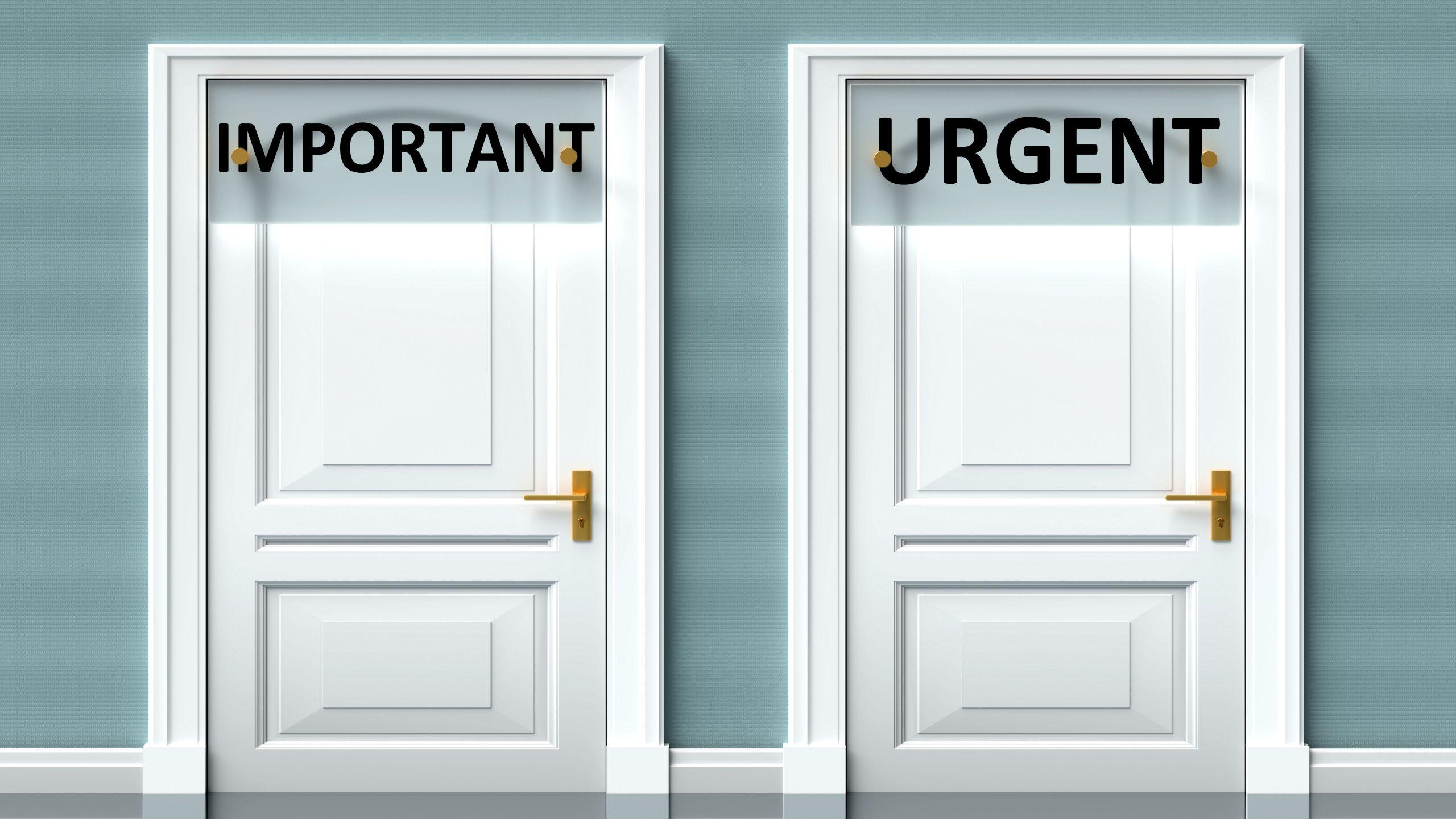 important urgent portes choix perles pierres monts et merveilles